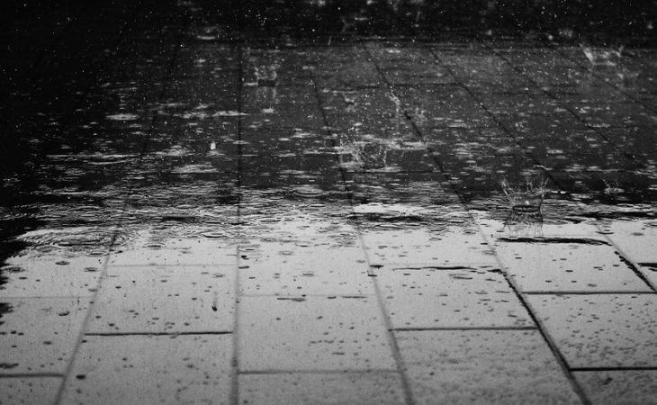 היום שאחרי המבול – שיקום האמון